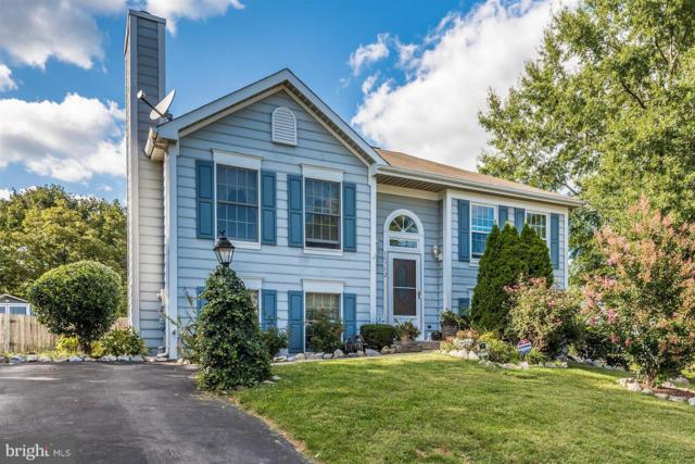 10712 Lynn Court, WILLIAMSPORT, MD 21795 (#1000072107) :: Remax Preferred | Scott Kompa Group