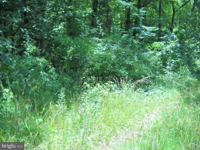 Lot 16 Oakley Drive, BUSHWOOD, MD 20618 (#1000072699) :: AJ Team Realty