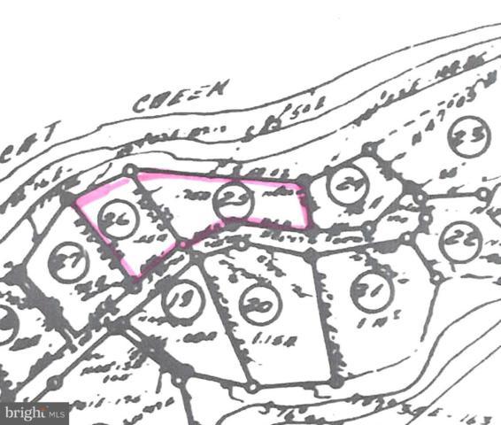 27323 Cat Creek Road, MECHANICSVILLE, MD 20659 (#1000072751) :: Blackwell Real Estate