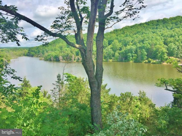 LOT 16 Knock Lane, MIDDLETOWN, VA 22645 (#1000074679) :: AJ Team Realty