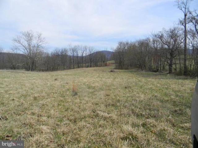 Boyd's Mill - Lot 8 Lane, BENTONVILLE, VA 22610 (#1000074703) :: Mortensen Team