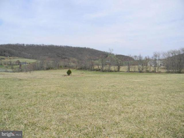 Boyd's Mill Lot 7 Lane, BENTONVILLE, VA 22610 (#1000074715) :: ExecuHome Realty