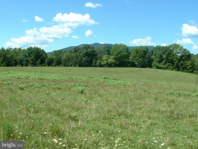 Bucks Mill Road, STRASBURG, VA 22657 (#1000075023) :: Blue Key Real Estate Sales Team