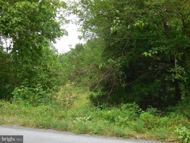 Long Meadow Road, MIDDLETOWN, VA 22645 (#1000075139) :: Remax Preferred   Scott Kompa Group