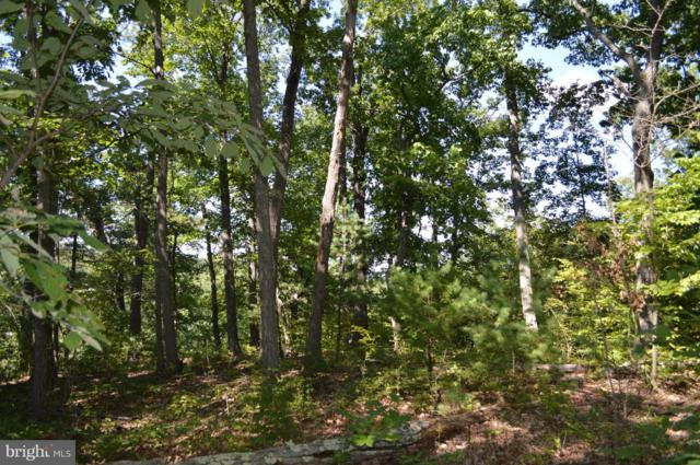 0 Cedar Mountain Lane, FRONT ROYAL, VA 22630 (#1000075775) :: ExecuHome Realty