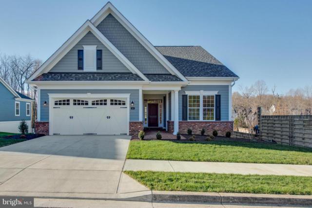 149 Buckeye Circle, LA PLATA, MD 20646 (#1000076675) :: Colgan Real Estate