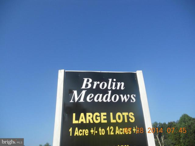 Houston Branch Road, FEDERALSBURG, MD 21632 (#1000079273) :: Atlantic Shores Realty