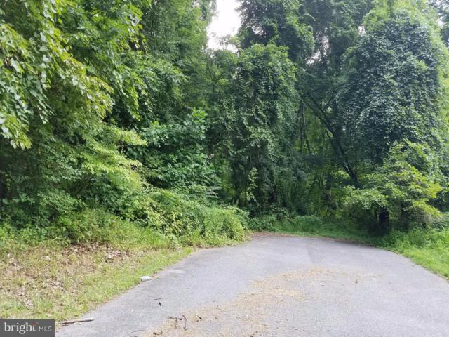 Link Lot 29 Drive, WESTMINSTER, MD 21157 (#1000081353) :: ExecuHome Realty