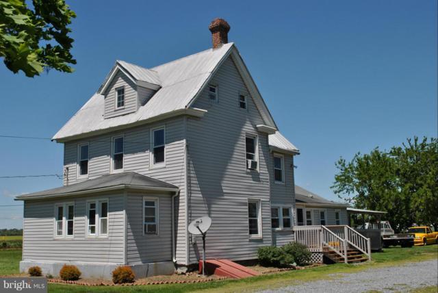 10141 Flatland Road, CHESTERTOWN, MD 21620 (#1000084019) :: Colgan Real Estate