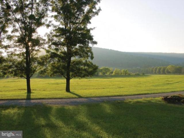 Ridgeside Road, BLUEMONT, VA 20135 (#1000084441) :: Ultimate Selling Team