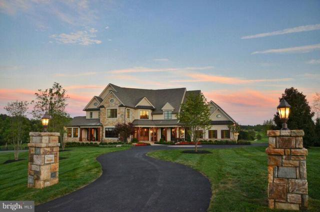 22360 Wilson Meadows Lane, ALDIE, VA 20105 (#1000085573) :: Remax Preferred | Scott Kompa Group