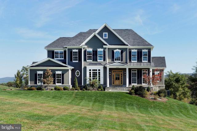 Skyfield Ridge, PURCELLVILLE, VA 20132 (#1000085977) :: Great Falls Great Homes