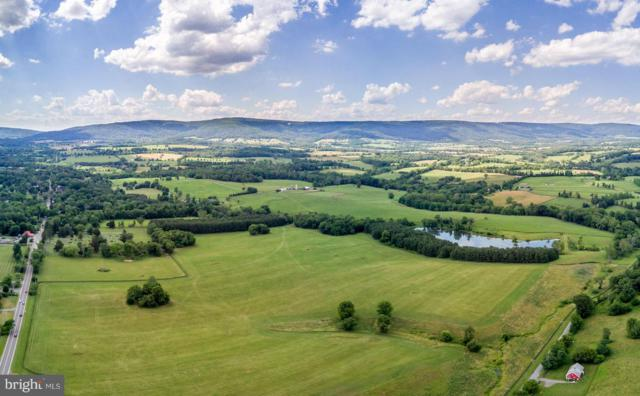 9092 John Mosby Highway, UPPERVILLE, VA 20184 (#1000086135) :: Eric Stewart Group