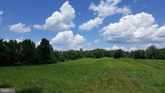 36651 Mountville Road, MIDDLEBURG, VA 20117 (#1000088755) :: The Greg Wells Team