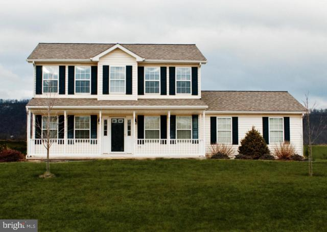 Duckwoods, MARTINSBURG, WV 25403 (#1000089233) :: Colgan Real Estate