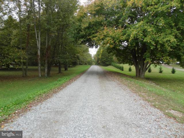Little River Estates, BUMPASS, VA 23024 (#1000091503) :: Colgan Real Estate