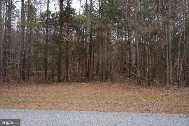 11319 Piney Forest Drive, BUMPASS, VA 23024 (#1000092905) :: Remax Preferred   Scott Kompa Group
