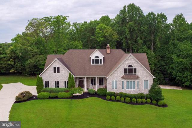 5 Wallace Farms Lane, FREDERICKSBURG, VA 22406 (#1000095101) :: Colgan Real Estate