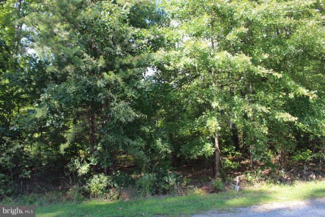 Mallard Drive, STAFFORD, VA 22554 (#1000096911) :: Eng Garcia Grant & Co.
