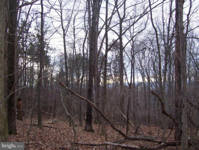 Ridge Road, FREDERICK, MD 21702 (#1000101151) :: Remax Preferred | Scott Kompa Group