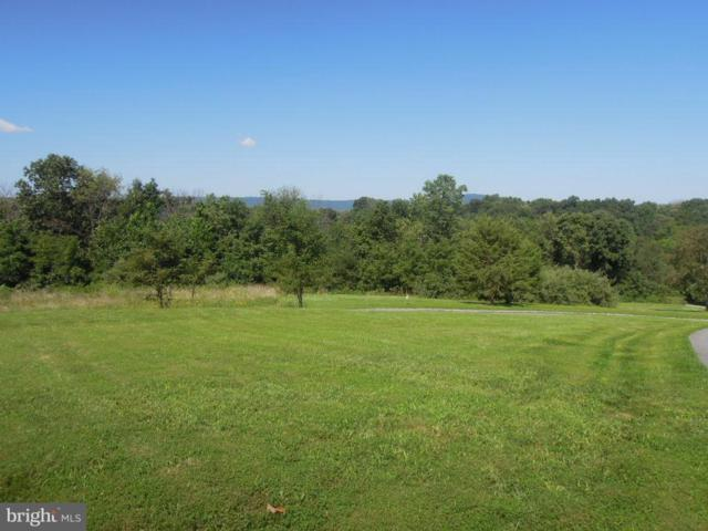 3019 Bennies Hill Road, MIDDLETOWN, MD 21769 (#1000101459) :: The Maryland Group of Long & Foster