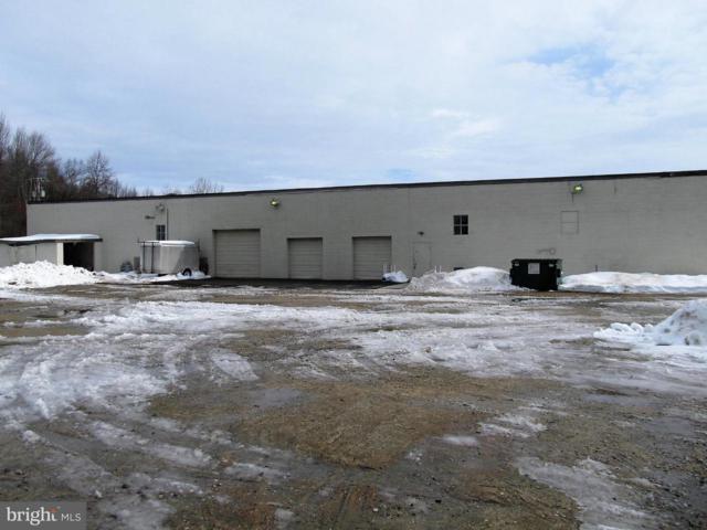 501 Zeitler Lane, ELKTON, MD 21921 (#1000104717) :: Colgan Real Estate