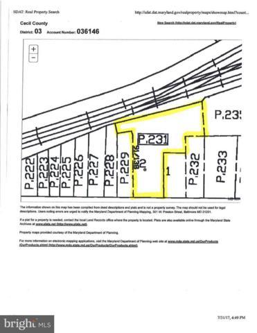 Main Street W, ELKTON, MD 21921 (#1000105975) :: Colgan Real Estate