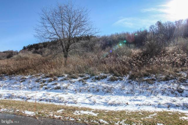 26 Settlers Pass, MC HENRY, MD 21541 (#1000109075) :: Colgan Real Estate