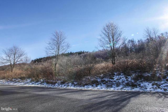 27 Settlers Pass, MC HENRY, MD 21541 (#1000109085) :: Colgan Real Estate