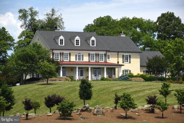 96 Lyle Lane, AMISSVILLE, VA 20106 (#1000113719) :: Remax Preferred | Scott Kompa Group
