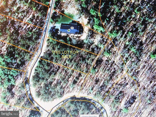 0 Beaver Road, BASYE, VA 22810 (#1000121065) :: Remax Preferred   Scott Kompa Group