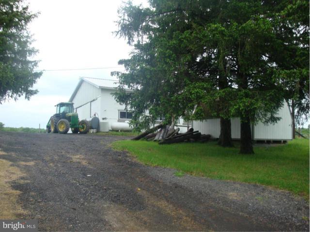 15806 Bear Hill Road SE, OLDTOWN, MD 21555 (#1000128259) :: Colgan Real Estate