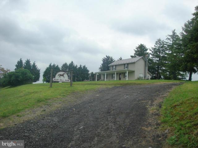 15806 Bear Hill Road SE, OLDTOWN, MD 21555 (#1000128269) :: Colgan Real Estate