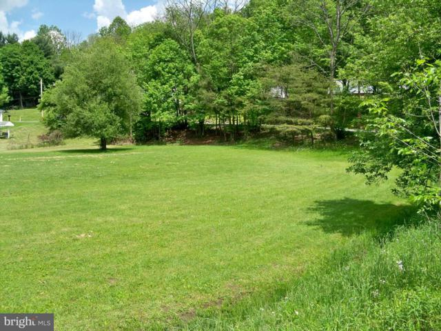 Quinn Street, MIDLAND, MD 21542 (#1000128405) :: ExecuHome Realty