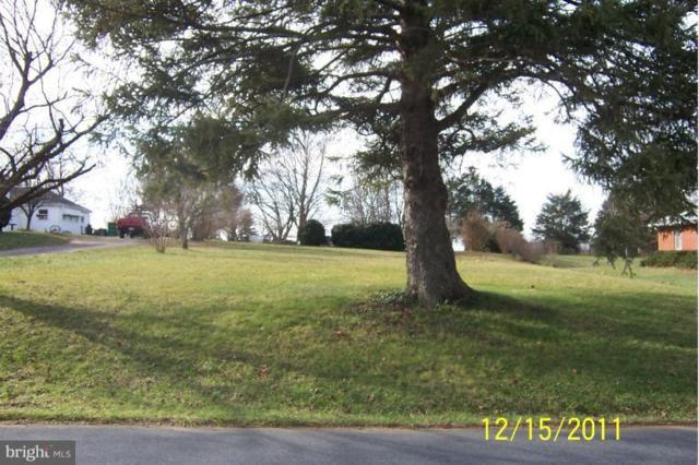 Fariview Road, LURAY, VA 22835 (#1000137809) :: Great Falls Great Homes