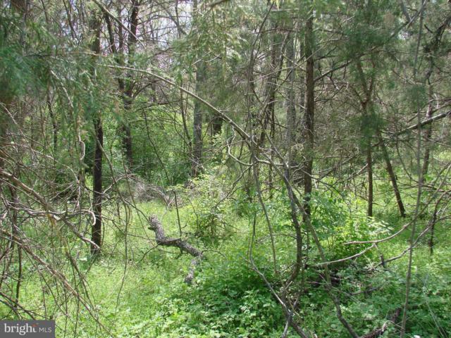 Long View Drive, LURAY, VA 22835 (#1000137819) :: AJ Team Realty