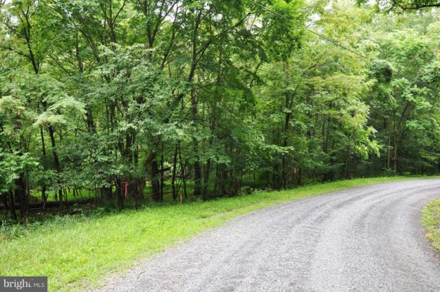 L-55 Logger Drive, GORE, VA 22637 (#1000138215) :: The Piano Home Group