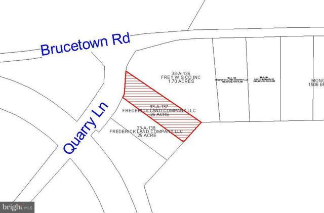 0 Quarry Lane, CLEAR BROOK, VA 22624 (#1000138219) :: The Redux Group