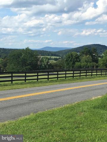 Apple Pie Ridge, WINCHESTER, VA 22603 (#1000138627) :: Eng Garcia Grant & Co.