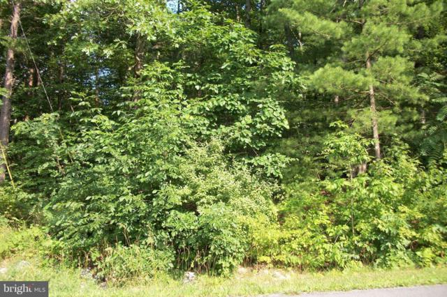 Lakeview Dr Lot 292, CROSS JUNCTION, VA 22625 (#1000139387) :: EXIT Realty Enterprises