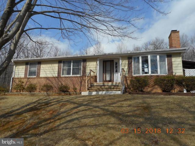 503 Cardinal Drive, WINCHESTER, VA 22602 (#1000140135) :: Blue Key Real Estate Sales Team
