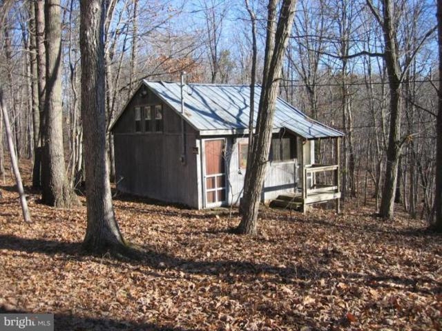 1767 Feltner Road, BLUEMONT, VA 20135 (#1000141405) :: ExecuHome Realty