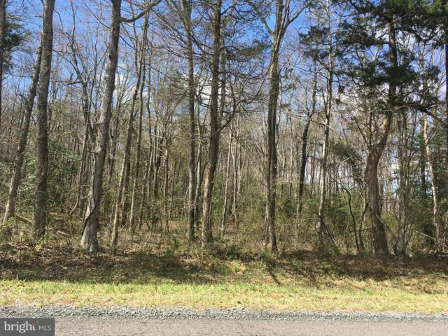 Lot 2 Grasty Gold Mine Road, RHOADESVILLE, VA 22542 (#1000142001) :: AJ Team Realty