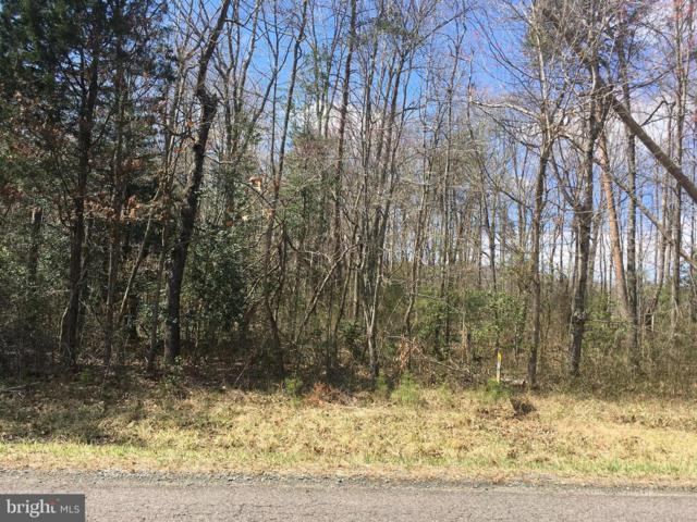 Lot 1 Grasty Gold Mine Road, RHOADESVILLE, VA 22542 (#1000142011) :: AJ Team Realty