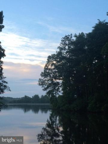 343 Land Or Drive, RUTHER GLEN, VA 22546 (#1000142709) :: Green Tree Realty
