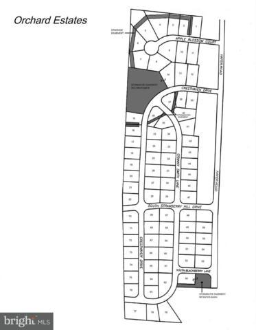 100 Blackberry Lane S, FAYETTEVILLE, PA 17222 (#1000143825) :: The Craig Hartranft Team, Berkshire Hathaway Homesale Realty
