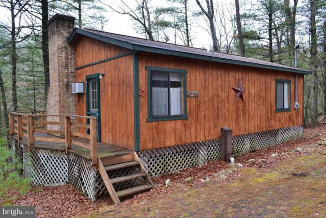353 Snyders Ridge Road, MATHIAS, WV 26812 (#1000146411) :: Colgan Real Estate