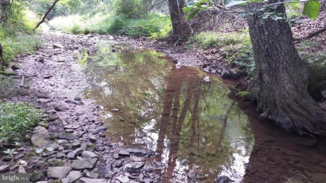 2 Upper Skaggs Run Road, MOOREFIELD, WV 26836 (#1000146887) :: ExecuHome Realty