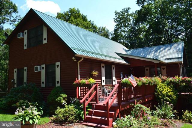 228 Hummingbird Hill Road, MATHIAS, WV 26812 (#1000146973) :: AJ Team Realty