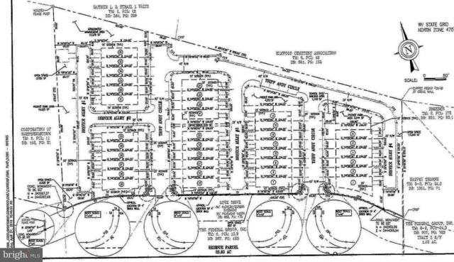 Lowe Drive, SHEPHERDSTOWN, WV 25443 (#1000147211) :: Great Falls Great Homes